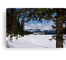 Lake Louise's Beauty Canvas Print