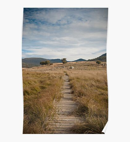 Yankee Hat walking track, Namadgi National Park, Australia Poster