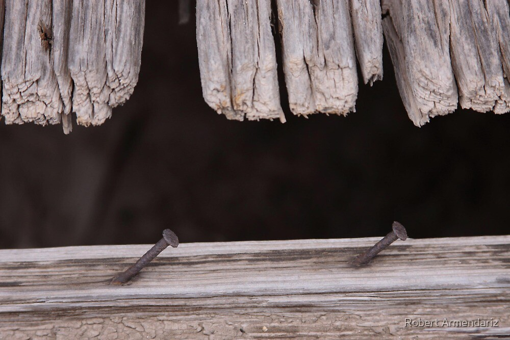 Weathered Wood and Rusty Nails by Robert Armendariz