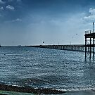Southend-on-Sea Pier by timmburgess
