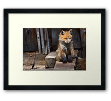 Little Buddy Framed Print