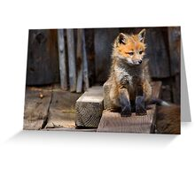 Little Buddy Greeting Card