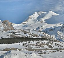 Mount Athabasca by Darbs