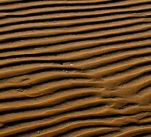 Ripples in sand by Ciaran Sidwell
