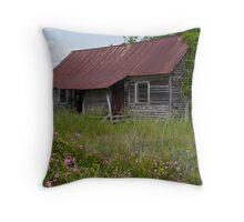 South Carolina Rural Scene Throw Pillow