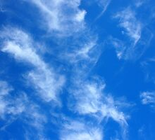Only the blue sky with cirrus clouds by vladromensky