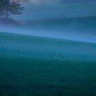 Fog.......... by Imi Koetz