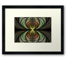 Pheasant Plumage Framed Print