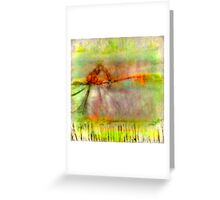 Serge of Summer Madness Greeting Card