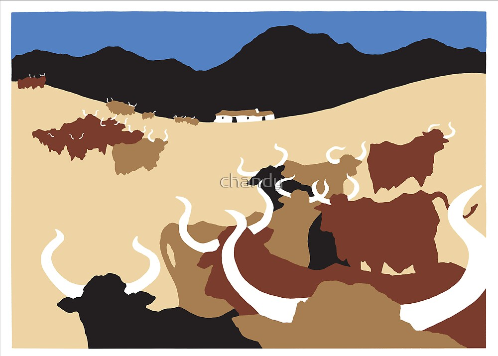 Cows by chandy