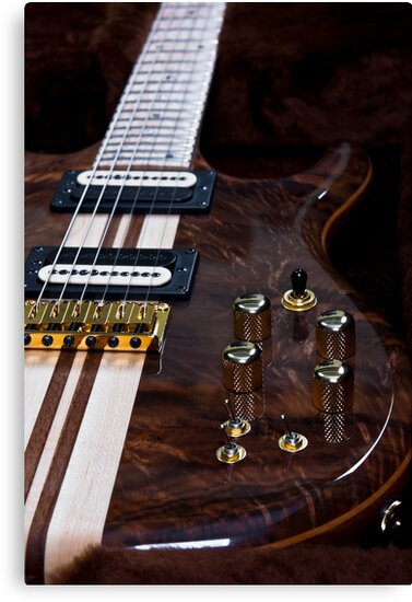 Exotic Wood Guitar by Robby Ticknor