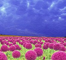 Pink and Purple by artstoreroom