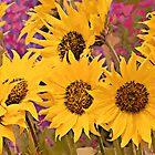 Sun Flowers by artstoreroom