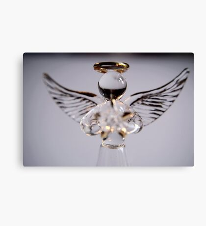 Fragile Angel Canvas Print