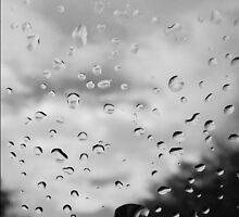 Reflecting Drops by Erica Yanina Horsley