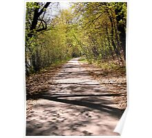 Pathway in Strathcona Park, Ottawa Poster