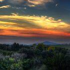 Vulci at sunset by Marco Borzacconi