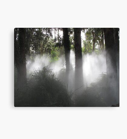 Fog sculpture @ National Gallery of Australia Canvas Print