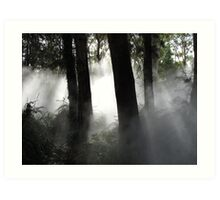 Fog sculpture @ National Gallery of Australia (2) Art Print