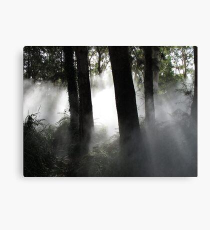 Fog sculpture @ National Gallery of Australia (2) Canvas Print