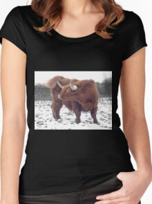 Highland cattle in snow Women's Fitted Scoop T-Shirt