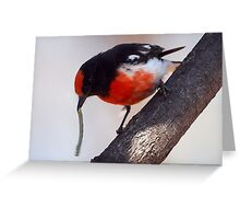 """Red-capped Robin ~ """"The Long Lunch"""" Greeting Card"""