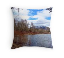 High Water 1 Throw Pillow