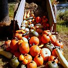 Autumn & Pumpkins (for a challenge) by Elfriede Fulda