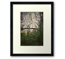 I'll Find My Way Framed Print