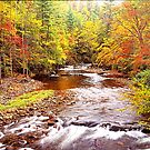 AUTUMN,LITTLE RIVER by Chuck Wickham