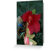 Viella at Flower Greeting Card