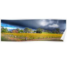 Barossa valley Storm Front Panorama Poster