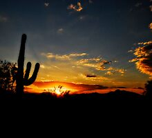 An Arizona Sunrise  by Saija  Lehtonen