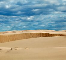 Stockton Beach by Tainia Finlay