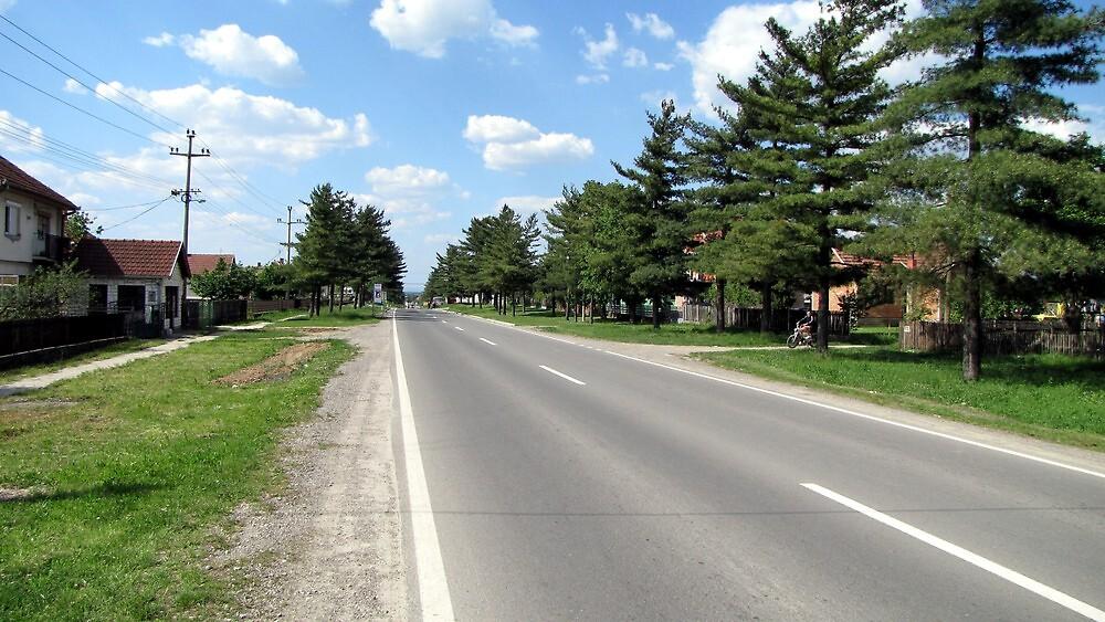 Jelenca - Deer Village by branko stanic