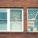 Patriotic & Poor by M.C. O'Connor