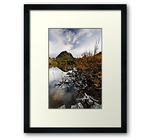 Twisted Fagus on Twisted Lakes Framed Print