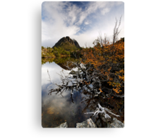Twisted Fagus on Twisted Lakes Canvas Print