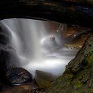 Natures Frame by John Morton