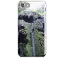 The Lovers' Secret Waterfall iPhone Case/Skin