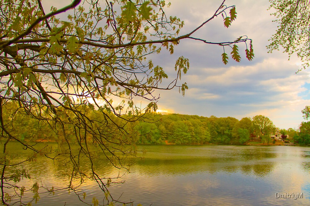 Brady Lake Look by DmitriyM