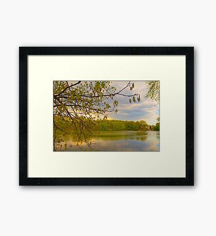 Brady Lake Look Framed Print