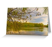 Brady Lake Look Greeting Card