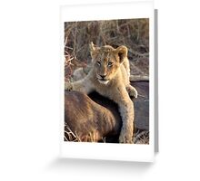 I Cannot Tell A Lie, I Did It Myself.... Greeting Card