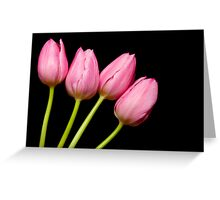 Four Pink Tulips Greeting Card