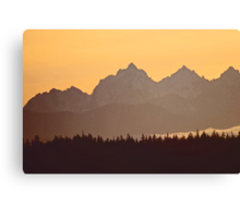 southern olympic mtn sunset, washington, usa Canvas Print