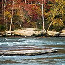 Autumn on the Cumberland River by Mary Carol Story