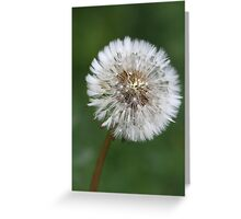 Fine and dandy Greeting Card