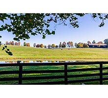 Kentucky Horse Farm Photographic Print