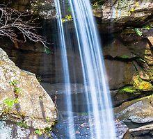 Eagle Falls by Mary Carol Story